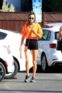 Alessandra Ambrosio Spotted while going to a gym in West Hollywood 09