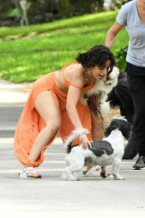 Camila Cabello Seen while she out for a walk with her dogs in Miami 09