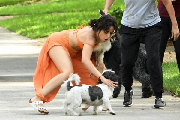 Camila Cabello Seen while she out for a walk with her dogs in Miami 10