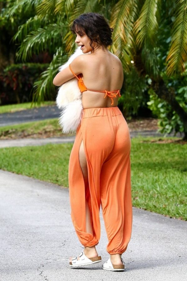 Camila Cabello Seen while she out for a walk with her dogs in Miami 20