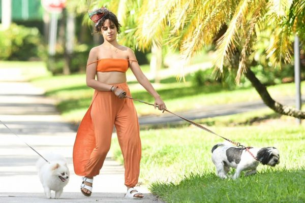 Camila Cabello Seen while she out for a walk with her dogs in Miami 25