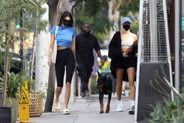 Hailey Bieber and Kendall Jenner Out for a walk with Kendall doberman in West Hollywood 01