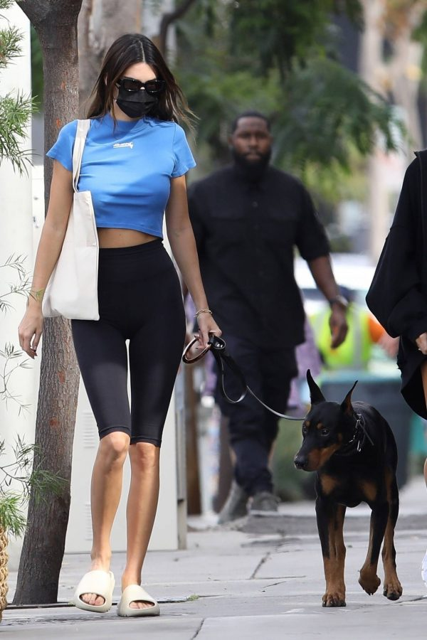 Hailey Bieber and Kendall Jenner Out for a walk with Kendall doberman in West Hollywood 06