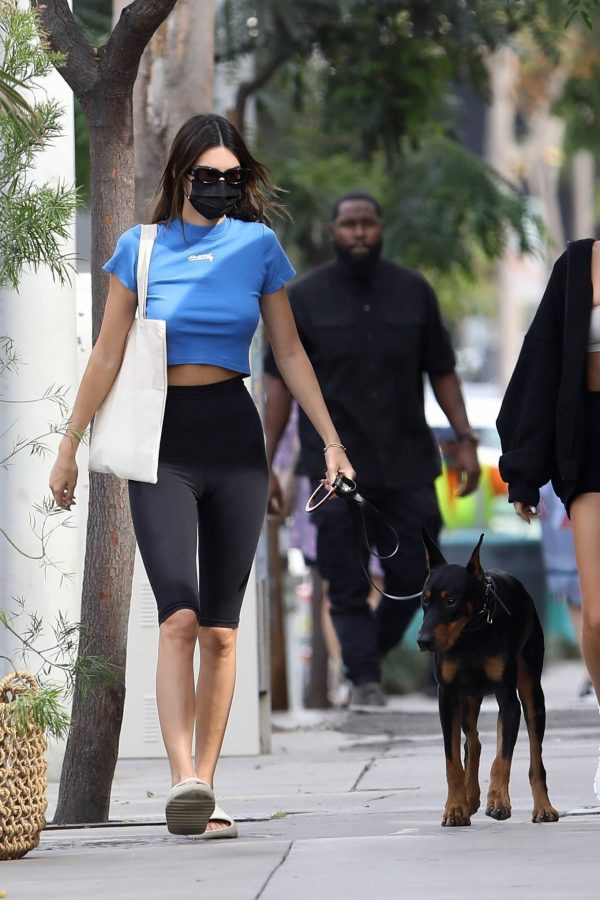 Hailey Bieber and Kendall Jenner Out for a walk with Kendall doberman in West Hollywood 07