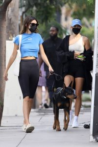 Hailey Bieber and Kendall Jenner Out for a walk with Kendall doberman in West Hollywood 08