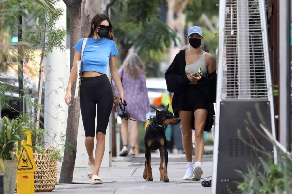 Hailey Bieber and Kendall Jenner Out for a walk with Kendall doberman in West Hollywood 10