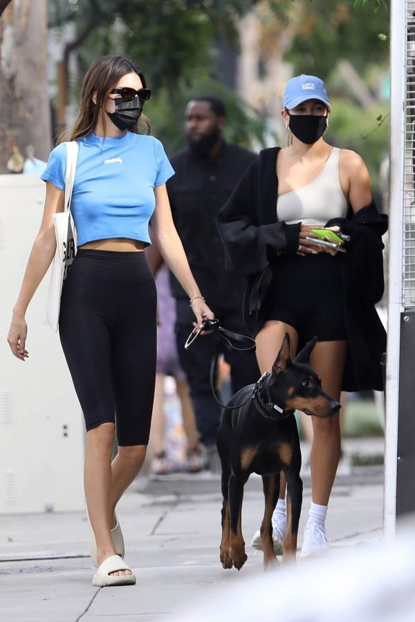Hailey Bieber and Kendall Jenner Out for a walk with Kendall doberman in West Hollywood 12