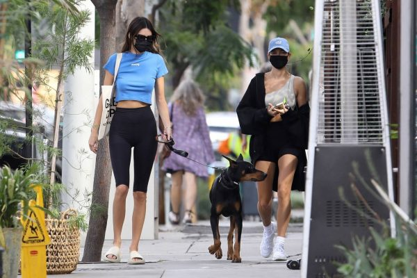 Hailey Bieber and Kendall Jenner Out for a walk with Kendall doberman in West Hollywood 13