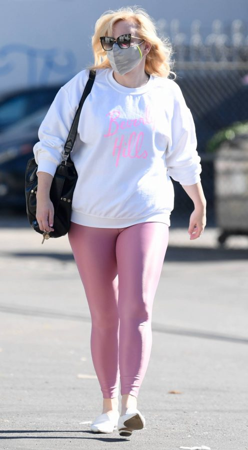 Rebel Wilson Stepping out in Los Angeles 08