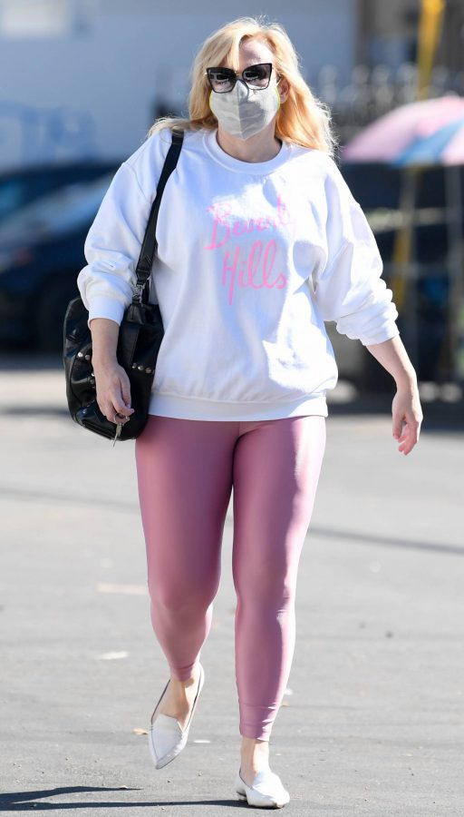 Rebel Wilson Stepping out in Los Angeles 09