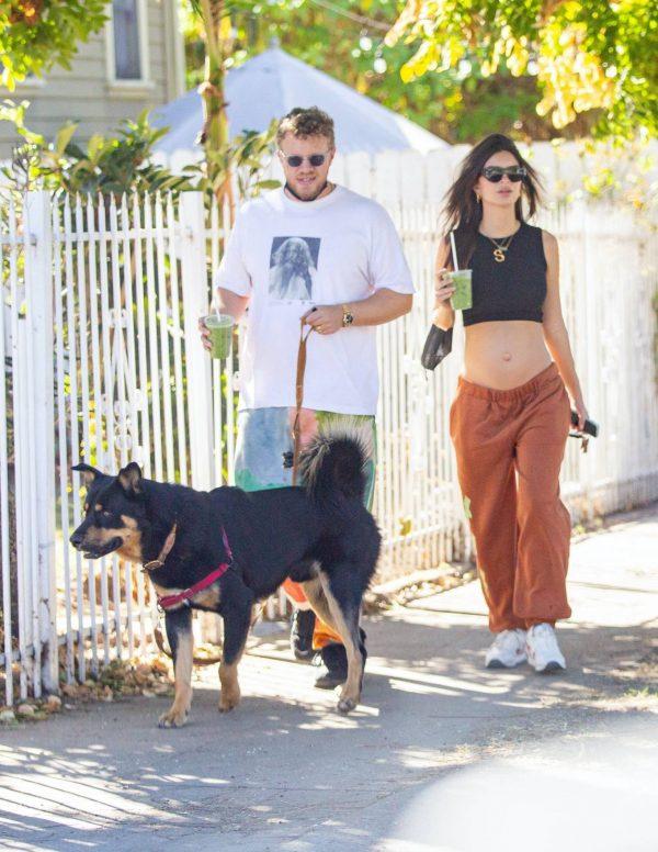 Emily Ratajkowski take a stroll with houseband in Los Angeles 11