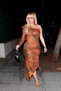 Bebe Rexha In a snake print dress at Charli DAmelio birthday celebration 08